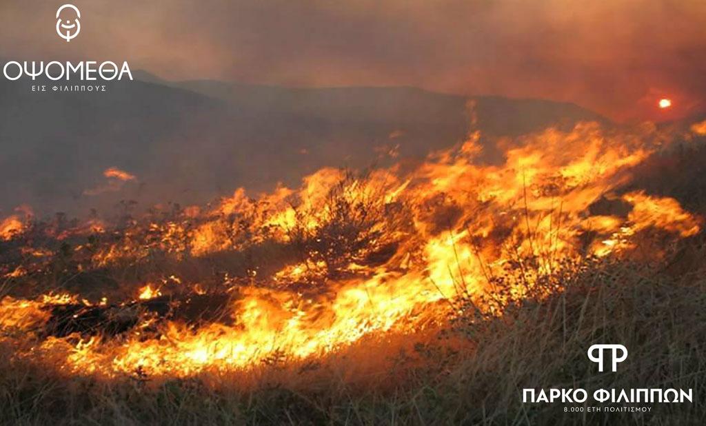 Δυσμενείς επιπτώσεις από την καύση των καλαμιών στο Πάρκο Φιλίππων